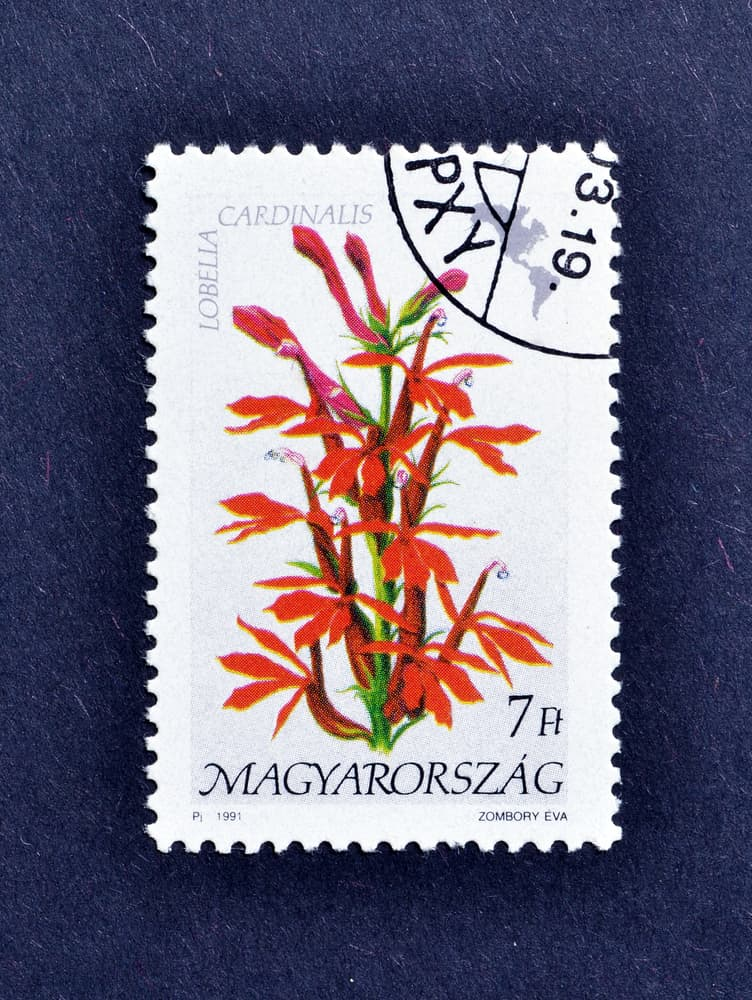 a 1991 postage stamp from Hungary