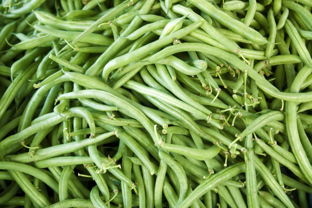 a collection of runner beans in a pile
