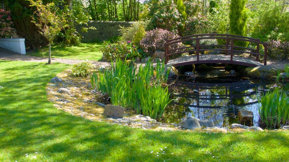a wooden bridge over a garden pond