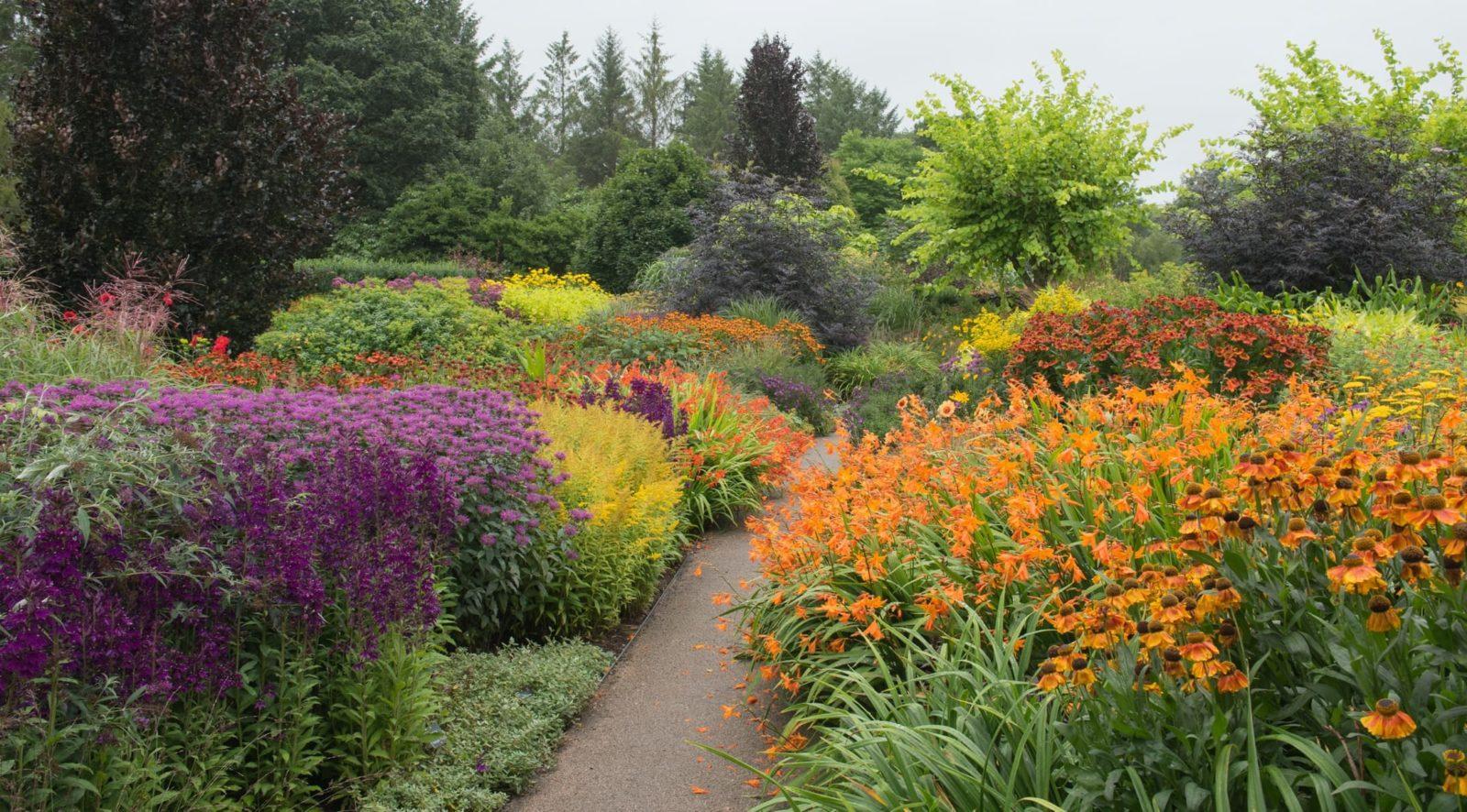 a path leading alongside a colourful herbaceous border with Crocosmia, Monarda and Coneflowers