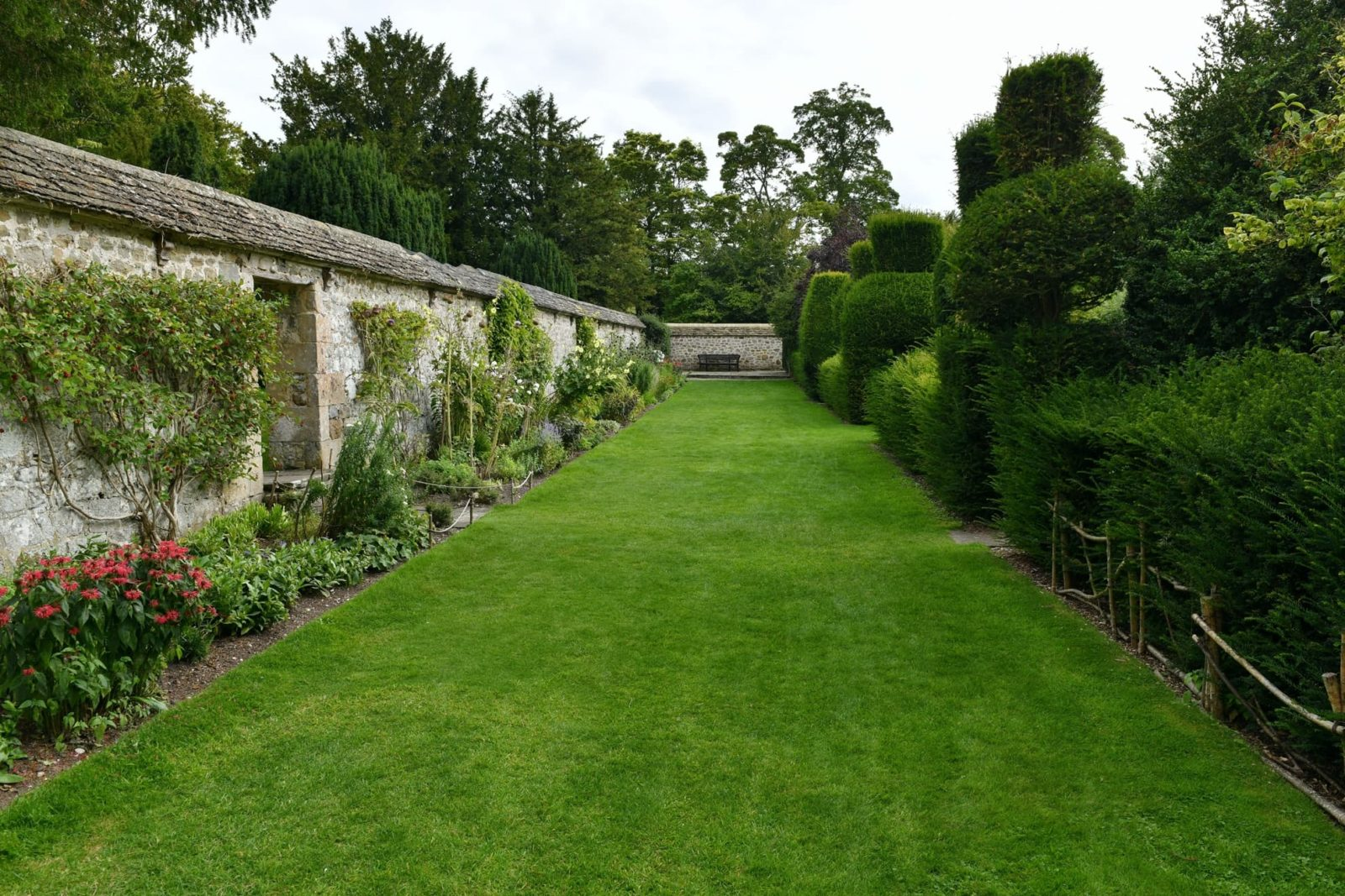 a long typical English garden with borders and trees in the background