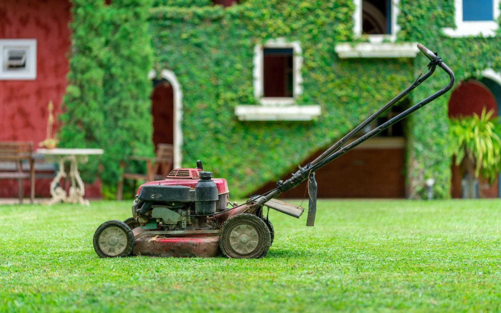 mulching lawn mower sat on grass