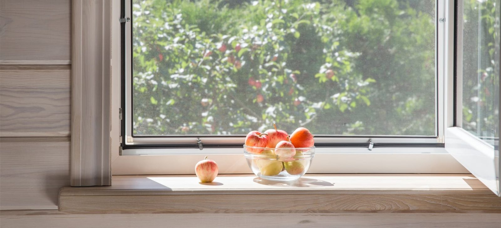 view from a window overlooking a garden, with a bowl of fruit on the windowsill