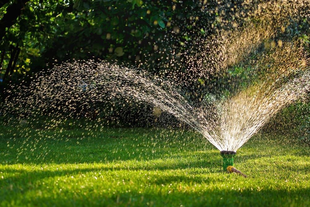 a lawn irrigation sprayer