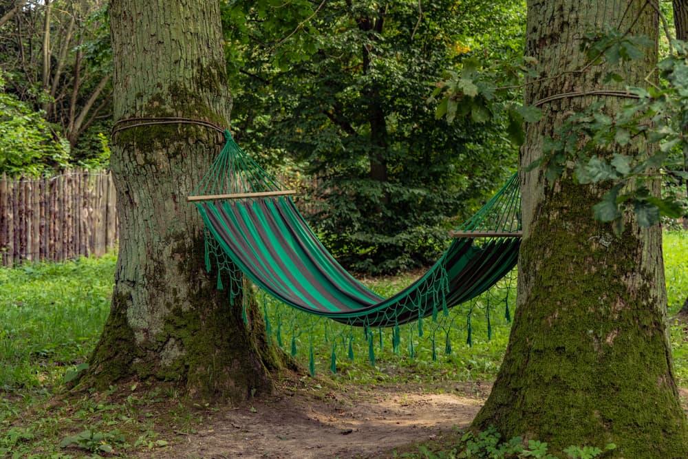 a garden hammock fixed between two tree trunks