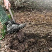 gardener digging soil for planting