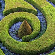 spiral topiary shapes in a garden