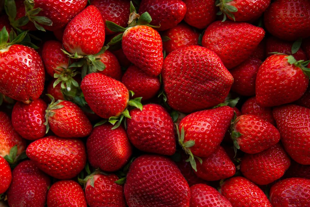 different shaped ripened strawberries