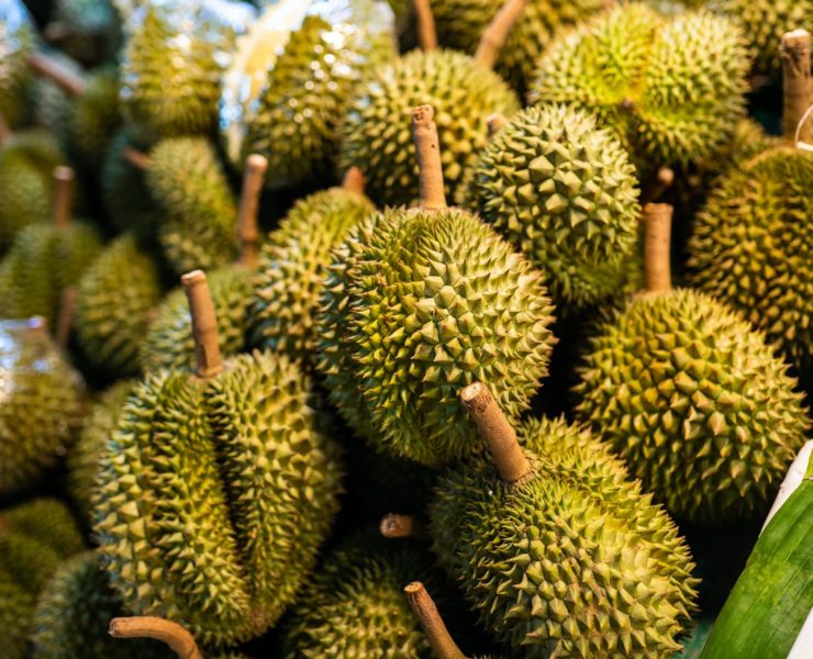 a large pile of durian fruits